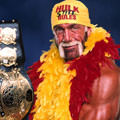Incredible Hulkster